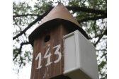 Pair of spotless starlings feeding nestlings